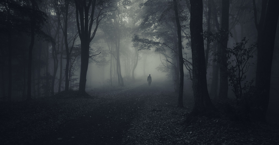 Spooky Forest Walk